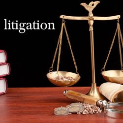 Understanding What Makes a Great Litigator
